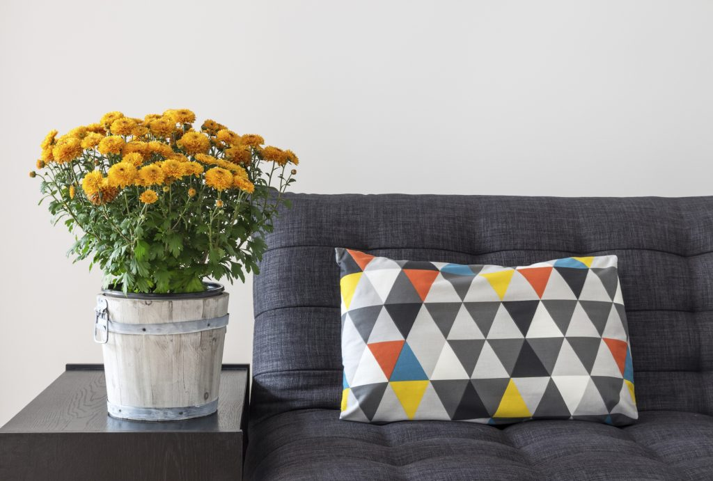 Redecorate Your Apartment: Fall 2015