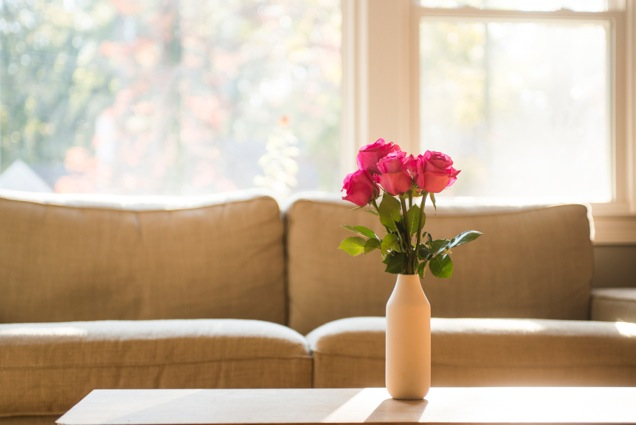 4 Easy Ways to Freshen Up Your Apartment Home