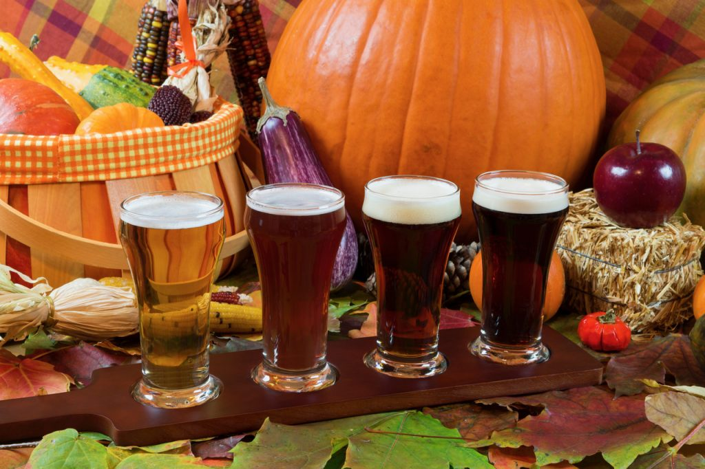 Fall Festivals for the Whole Family in Manassas, VA